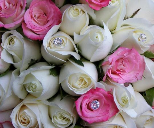 Woonona Florist
